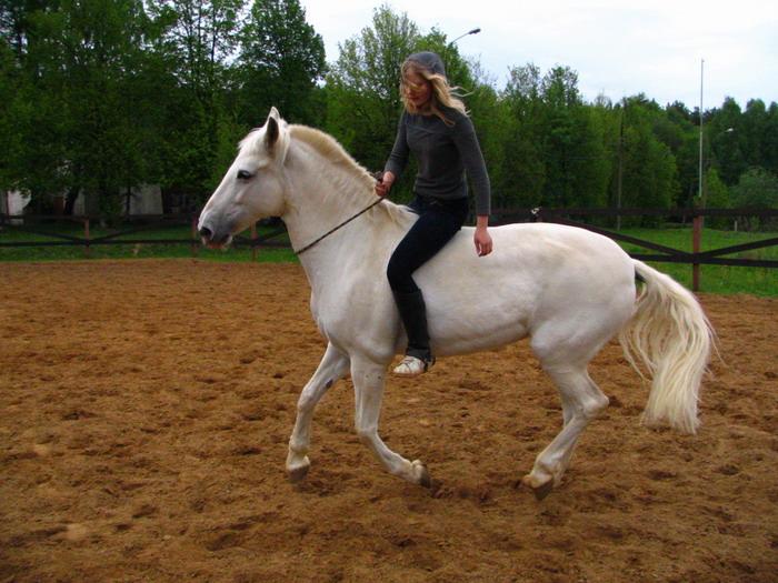 http://sunnyhorse.narod.ru/img_5994.jpg